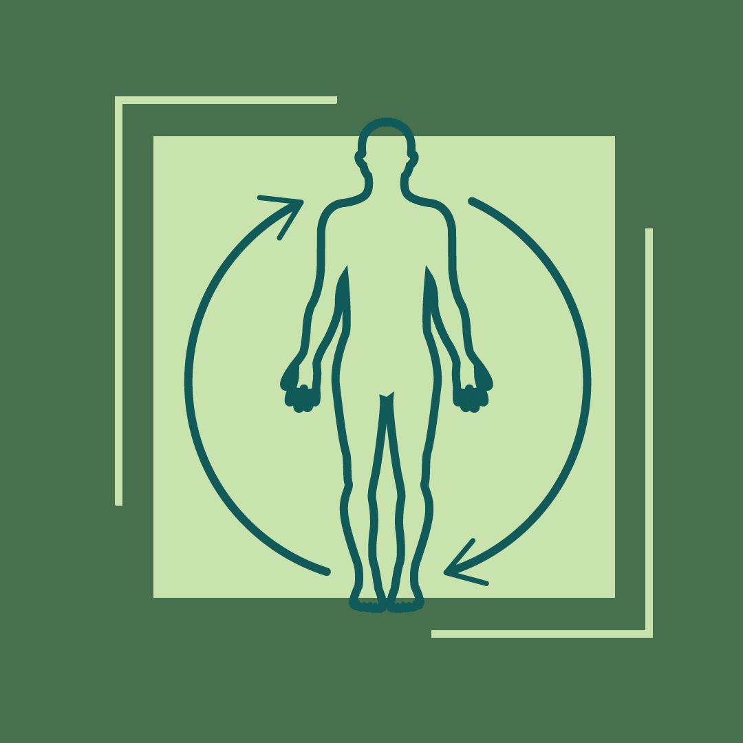 living-well-integrative-healtcare-whole-body